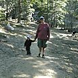 walking Tahoe Forest with Parker